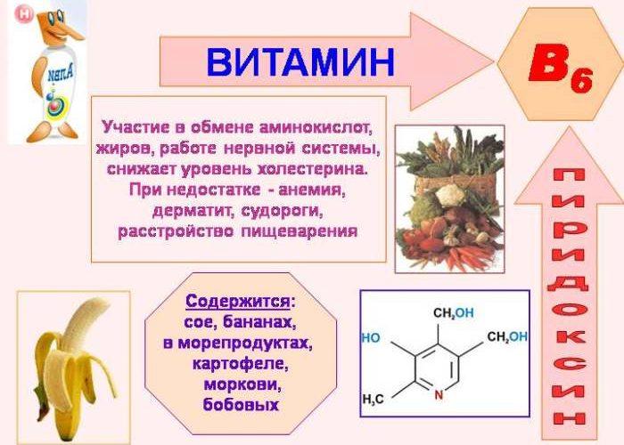 B6 или пиридоксин