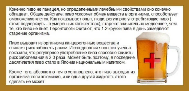 Пиво с медом и молоком