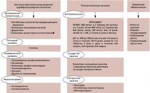 Принципиальная схема лечения Мексидолом