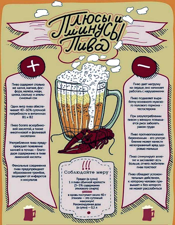 Достоинства и недостатки пива