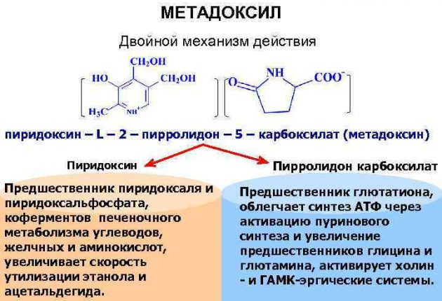 Метадоксил дозировка