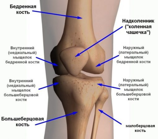 Как происходит хруст в колене